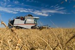 Free Combine Harvester Stock Image - 3237621