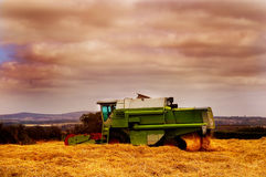 Combine Harvester. Combine harvester cutting in a field of hay Royalty Free Stock Image