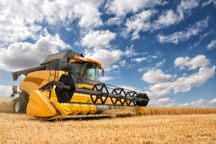 Combine harvester in action. Stock Photo