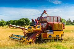 Combine harvester in action on rice field. Harvesting is the pro. Cess of gathering a ripe crop from the fields in thailand stock photography