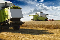 Combine harvester in action on wheat field. Royalty Free Stock Image
