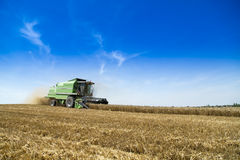 Combine harvester in action on wheat field. Royalty Free Stock Images