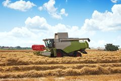 Combine harvester in action on wheat field, aerial drone view Stock Image