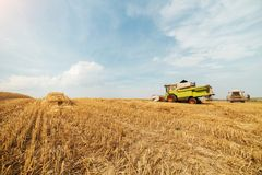 Combine harvester in action on wheat field. Agricultural activity Stock Photography