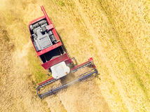 Combine harvester. Royalty Free Stock Photo