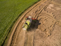 Combine harvester - Aerial view of modern combine harvester at the harvesting the wheat on the golden wheat field in the summer Stock Photos