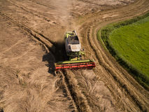 Combine harvester - Aerial view of modern combine harvester at the harvesting the wheat on the golden wheat field in the summer Royalty Free Stock Photo