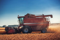 Combine harvester agriculture machine harvesting golden ripe wheat field stock photo