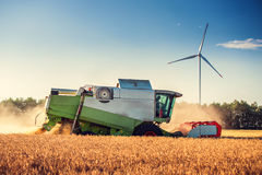 Combine harvester agriculture machine harvesting golden ripe wheat field royalty free stock image