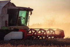 Combine harvester agriculture machine harvesting golden ripe whe Stock Photos