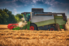 Combine harvester agriculture machine harvesting golden ripe wheat field royalty free stock images