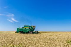 Combine harvester agriculture machine harvesting yellow ripe wheat field. Copy space Royalty Free Stock Photos