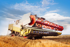Combine-harvester collecting wheat grain. Close-up. Cloud blue sky. Horizontal. Working concept Stock Image