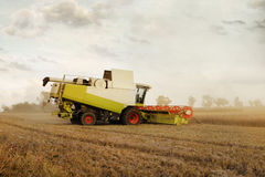 Combine harvester at corn. Combine harvester at wheat earning royalty free stock photos