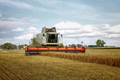 Combine harvester at corn. Combine harvester at wheat earning royalty free stock photography