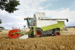 Combine harvester at corn. Combine harvester at wheat earning Stock Images