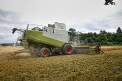 Combine harvester at corn. Combine harvester at wheat earning stock photos