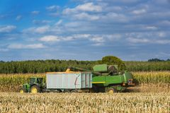 Combine harvester corn and discharge it into the trailer Stock Image