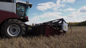 Combine harvester cut the ripe stems of oats at autumn farm field. Ombine harvester cut the ripe stems of oats at autumn farm field. Industrial agriculture stock footage