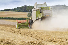 Combine harvester cutting cereal Stock Photography