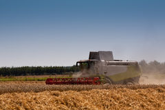 Combine harvester on a Danish field. Blue sky and dust behind harvester Royalty Free Stock Photo
