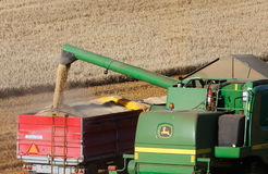 Combine harvester drains the torn seed Stock Photography