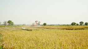 Combine harvester stock footage
