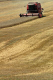 Combine harvester on field Royalty Free Stock Images