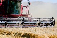 Combine harvester on field. Harvesting barley Stock Photo