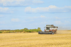 Combine harvester in the field. Agriculture machine Royalty Free Stock Photo