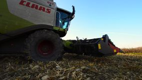 Combine harvester in a field of corn stock video footage