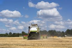 Combine-harvester in the field to gather the harvest of grain crops. Rye, wheat stock image
