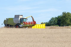 Combine harvester filling a yellow bin with harvested wheat in e Stock Photo