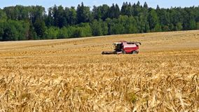 Combine harvester front in wheat field