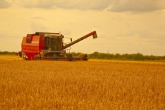 Combine harvester gathering the barley crop. Stock Photo