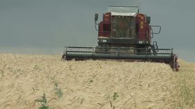 Combine harvester gathers the wheat crop stock video footage
