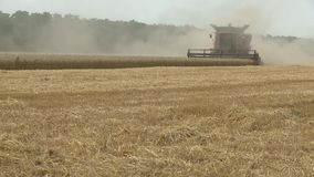 Combine harvester gathers the wheat crop. Agriculture and harvester. Combine harvester gathers the wheat crop stock footage