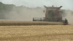Combine harvester gathers the wheat crop. Agriculture and harvester. Combine harvester gathers the wheat crop stock video footage