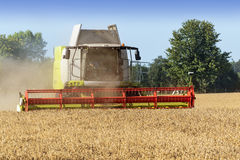Combine harvester on a golden wheat field Royalty Free Stock Photography