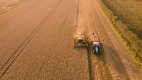 Combine harvester and grain cart at sunset - aerial 4K footage. Farmers work the field in Yorkshire, UK at the end of a hot summer. Recorded on a Mavic drone stock video footage