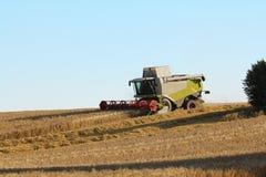 combine harvester on grain field Stock Image