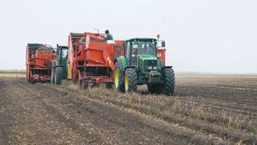 Combine harvester harvest potato. BEZENCHUK, RUSSIA - SEPTEMBER 14: Combine harvester and a tractor in a field harvest potato on September 14, 2017 in Bezenchuk stock footage