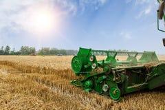 Combine harvester harvest ripe wheat Stock Images