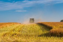 Combine harvester during harvesting Stock Photography