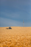 Combine harvester harvesting corn Royalty Free Stock Photo
