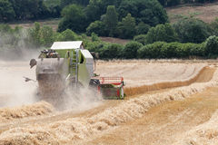 Combine harvester harvesting a crop of wheat Stock Photography