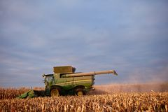 Combine harvester harvesting a field of maize. At dusk against a hazy sky in a low angle view against the fresh stubble Stock Photo