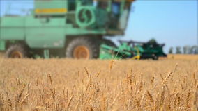 The combine Harvester harvesting in a field of wheat. 60fps stock video footage
