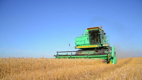Combine Harvester harvesting in a field of wheat stock video footage