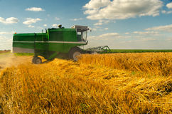 Combine harvester harvesting wheat. On sunny summer day royalty free stock images